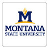 Montana State University at Bozeman logo